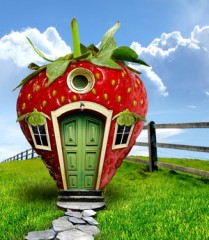 Strawberry_Fields_by_funkmaster_c.jpg